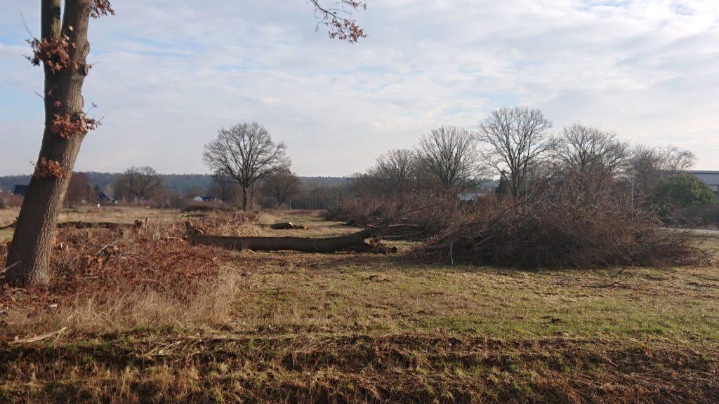 """Pressemitteilung zum Verkauf eines Grundstücks im Bereich des Bebauungsplan 26 """"Am Avendorfer  Weg"""""""